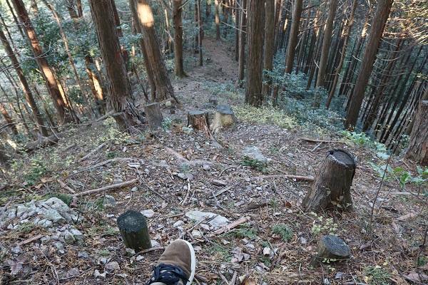 平成山遊歩道の急な道