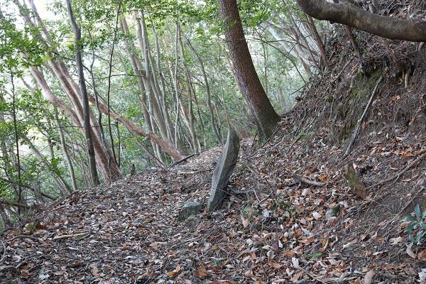 高澤古道参詣道の石仏