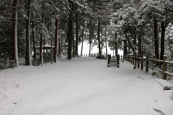 この地域では珍しい大雪