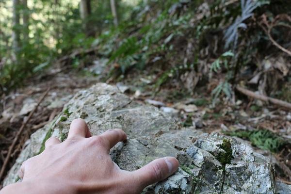 八大龍王神の登山道は手をついてよじ登る場面も