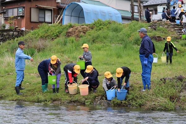 稚鮎を川岸まで運んだ小学生たち