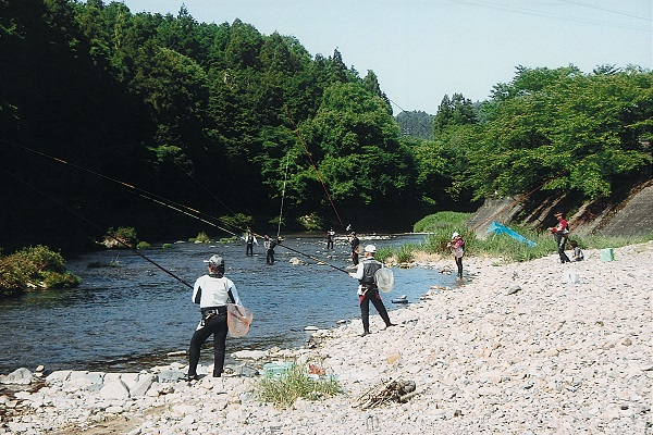 津保川の鮎釣り風景