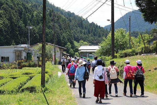 雁曾礼地区を歩く参加者たち