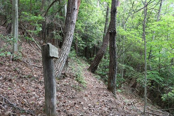 関市権現山登山道に設置された案内板