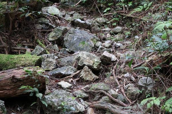 関市権現山登山道の落石