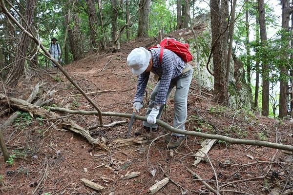 倒木を掃除しながら権現山に登る丹羽さん