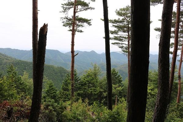 関市権現山頂上付近の社跡