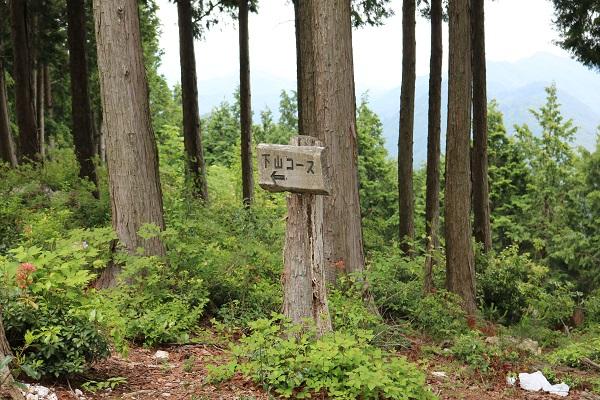 関市権現山頂上からの下山コース
