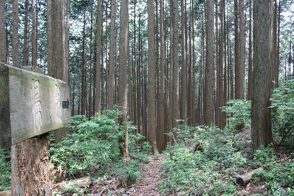 関市権現山の下山コースに設置された案内板