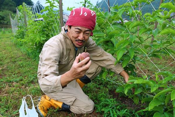 古池裕美さんにパッションフルーツの収穫方法を教わる中田誠志さん