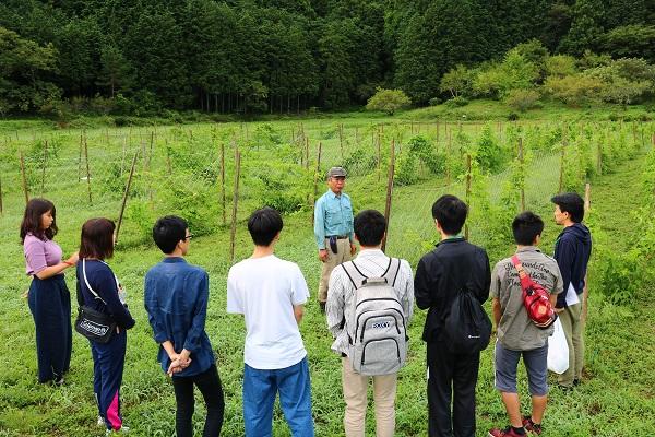 せきららゼミ2日目パッションフルーツ収穫体験