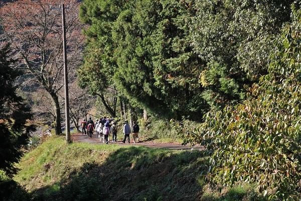 秋の田舎道はポカポカ陽気で歩きやすい
