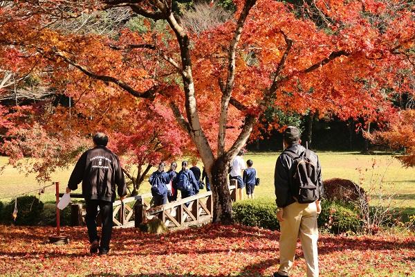 紅葉が美しい八滝ウッディランド