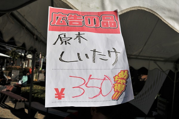 道の駅平成の椎茸まつり