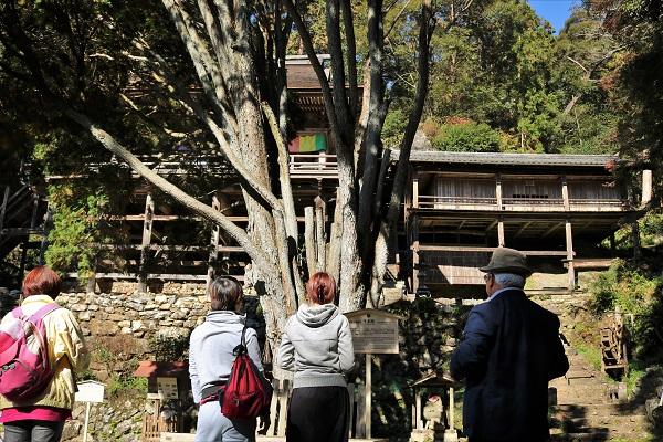 日龍峯寺を見学する参加者たち