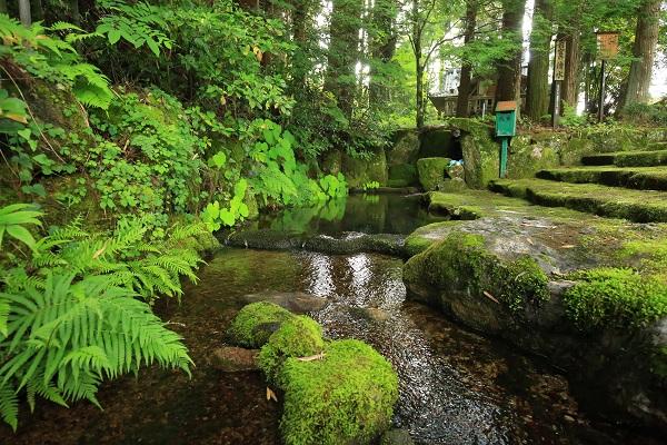 岐阜県の名水50選。お宮の清水