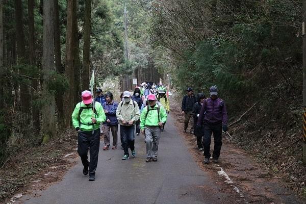 平成林道を歩く参加者
