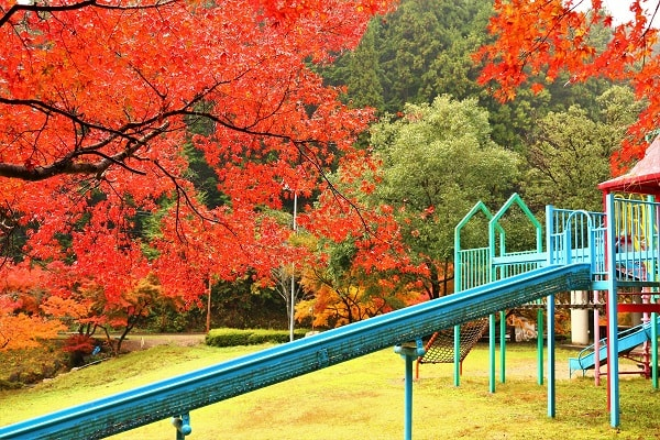 八滝ウッディランド名物「ロングすべり台」