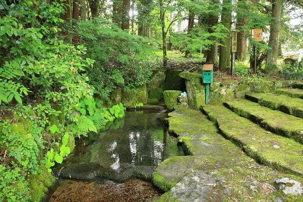 夏のお宮の清水