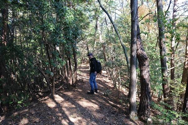 本城山登山道は歩きやすい