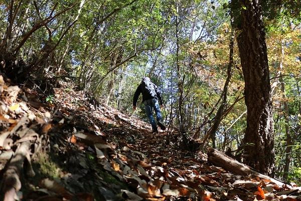 本城山登山道の急な坂道
