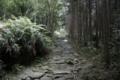 熊野古道 馬越峠