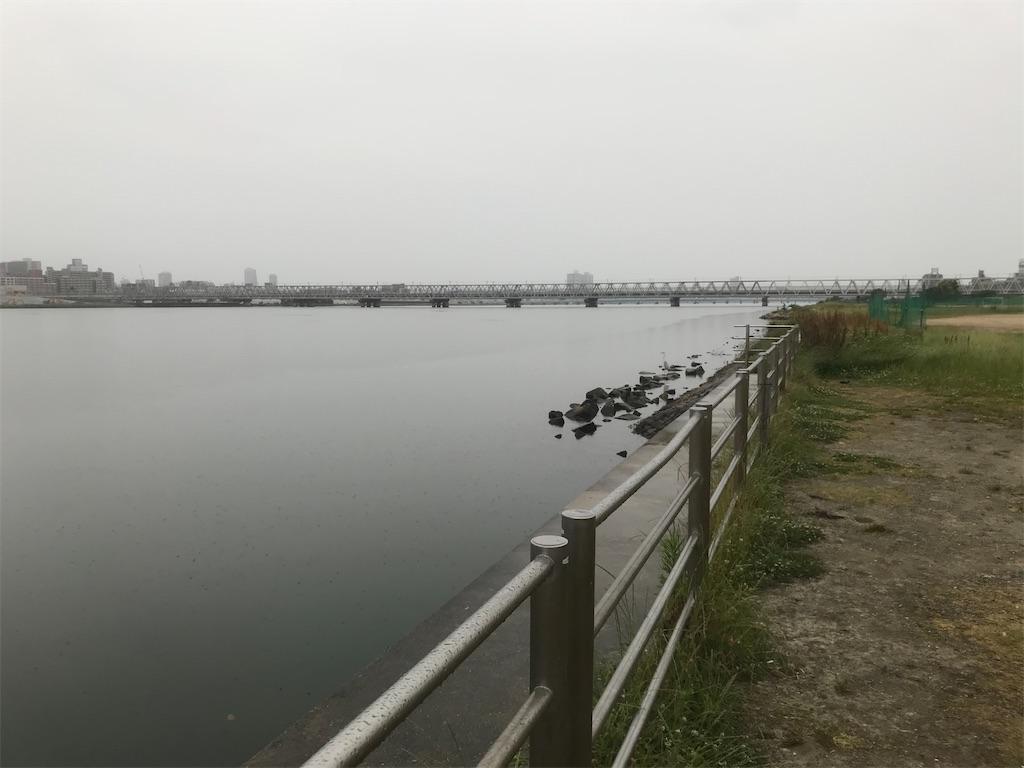 f:id:mukogawaichimonjitaro:20200531173234j:image