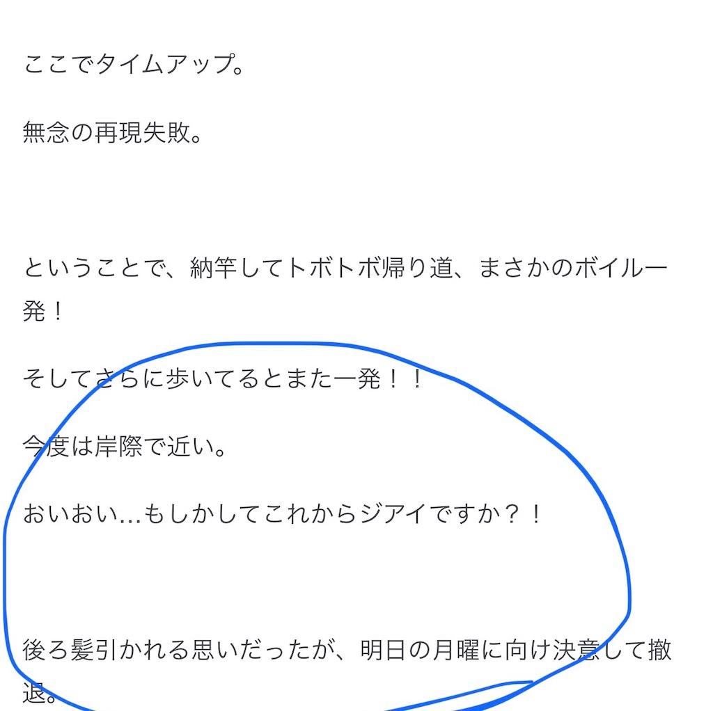 f:id:mukogawaichimonjitaro:20200730225237j:image