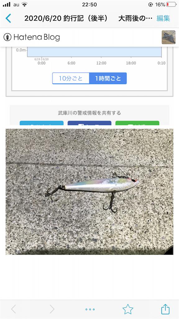 f:id:mukogawaichimonjitaro:20200914001954p:image