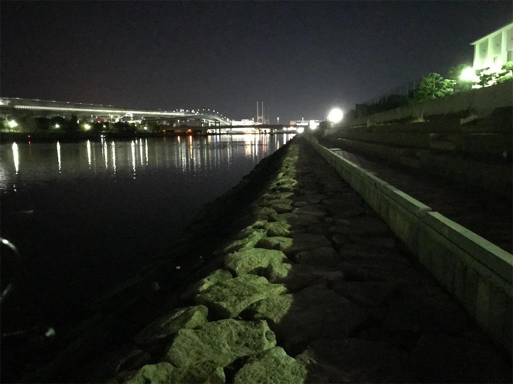 f:id:mukogawaichimonjitaro:20201205094125j:image