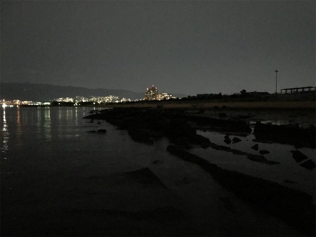 f:id:mukogawaichimonjitaro:20210227182330j:image