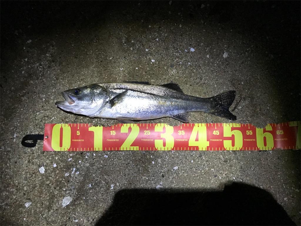 f:id:mukogawaichimonjitaro:20210609143705j:image