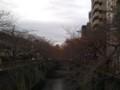 [まち][tokyo][nakameguro]2008年11月24日目黒川沿いをひとりで歩く
