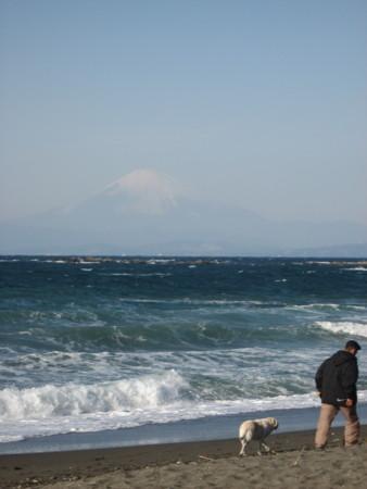 f:id:mukunokiy0725:20110109093647j:image