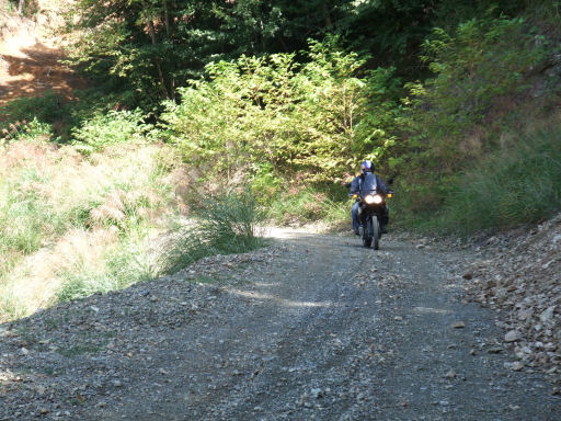 https://cdn-ak.f.st-hatena.com/images/fotolife/m/mulder_rider/20190810/20190810200442.jpg