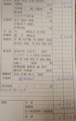 f:id:mumitiyoko11:20181215184843j:plain
