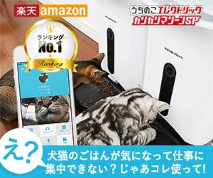 f:id:mumitiyoko11:20181229171100j:plain