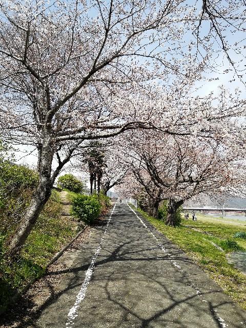 f:id:mumuhiromu:20210327173731j:image