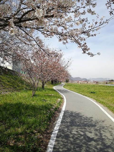 f:id:mumuhiromu:20210327173808j:image