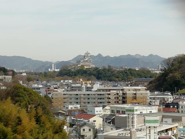 f:id:mumuhiromu:20210327175451j:image