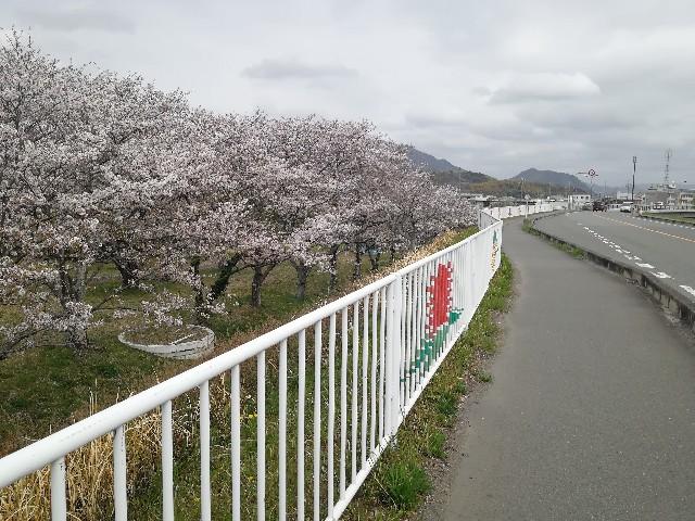 f:id:mumuhiromu:20210403211011j:image
