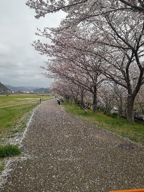 f:id:mumuhiromu:20210403211259j:image
