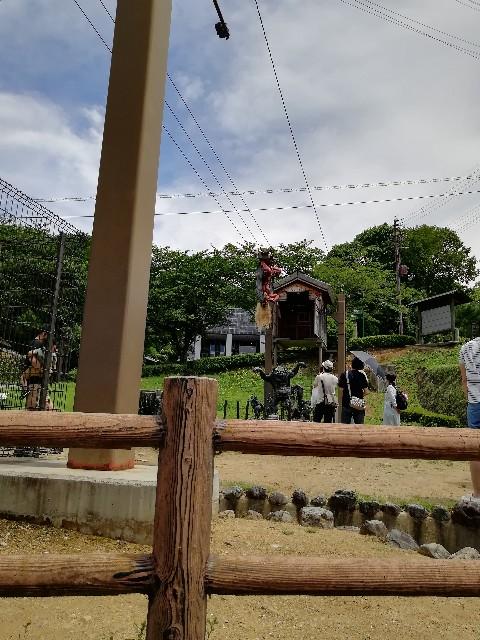 f:id:mumuhiromu:20210626204220j:image