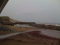 [散歩道]清水浜のテトラポッド