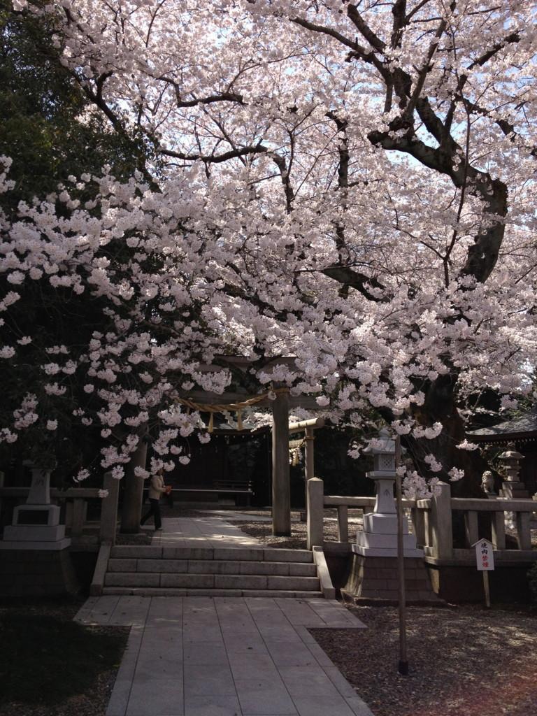 f:id:munakata_kenken:20120413125525j:plain