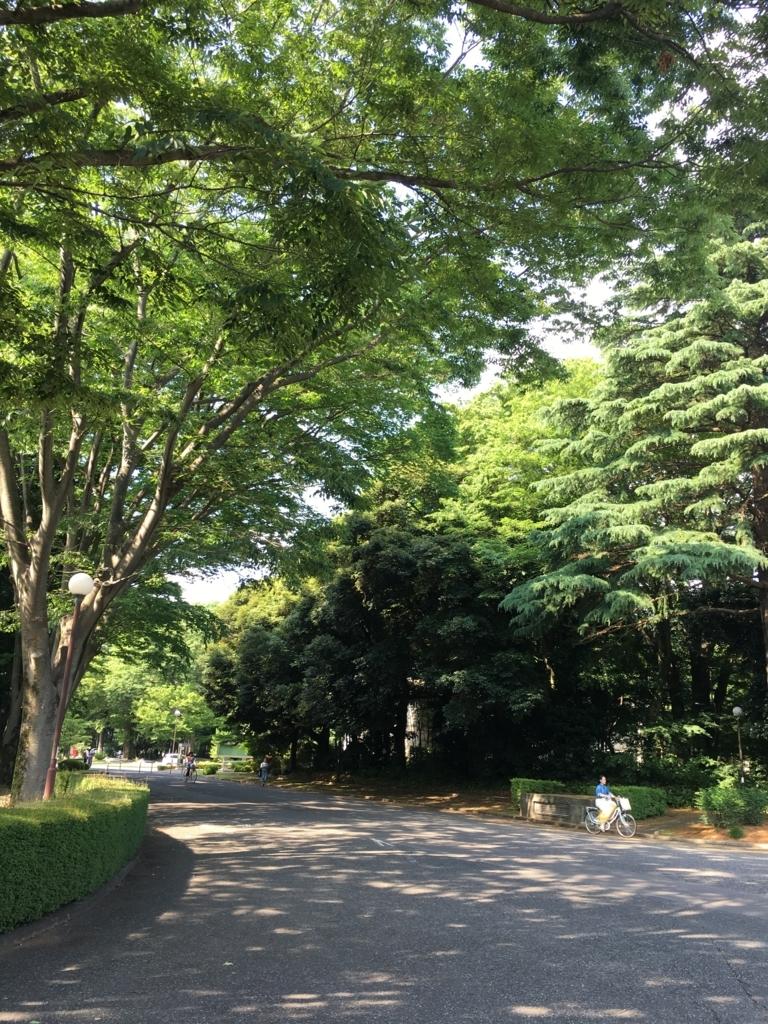f:id:munakatayoko:20170615174817j:plain