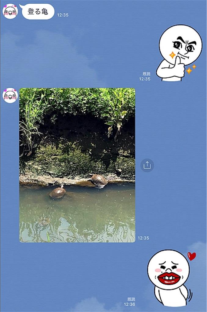 f:id:munazouchan48:20180509160352j:image