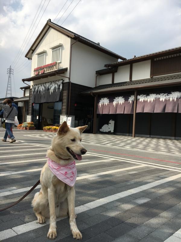 f:id:mune_gamu:20170501145426j:plain