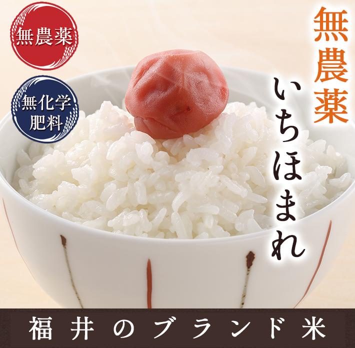 f:id:munouyakumai:20210629130936j:plain