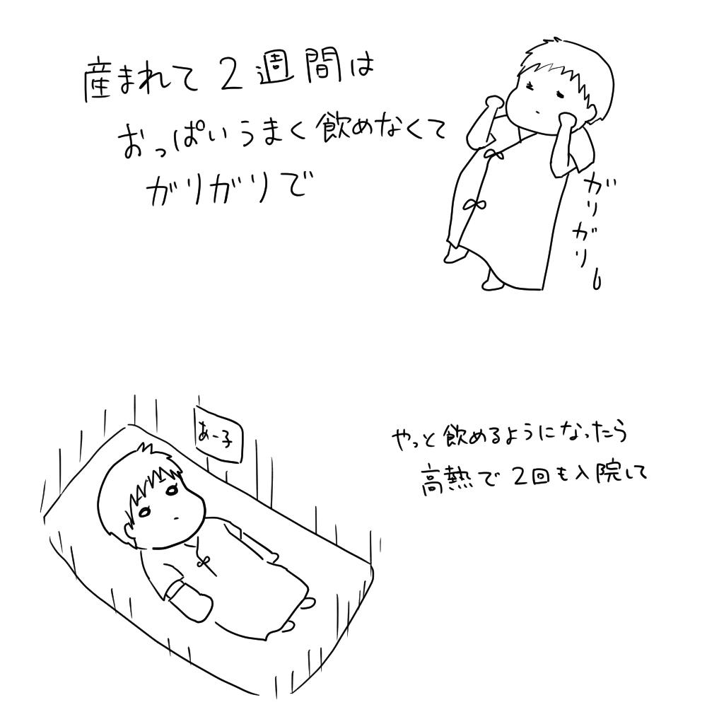 f:id:munyasan:20190228154154j:plain:w500